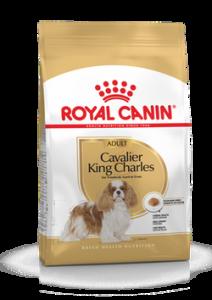 ROYAL CANIN  CAVALIER 1,5 KG