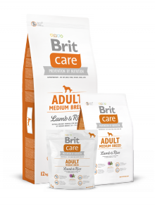 BRIT CARE ADULT MEDIUM 1KG LAMB & RICE