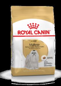 ROYAL CANIN MALTESE ADULT 0,5 KG