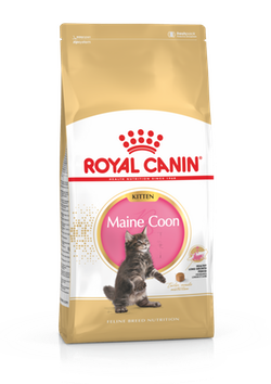 ROYAL CANIN KITTEN MAINE COON 2KG