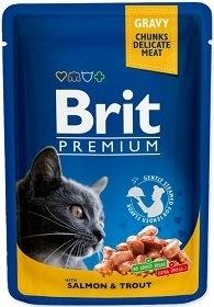 BRIT CAT POUCHES 100G SALMON/TROUT