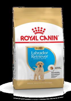 ROYAL CANIN LABRADOR RETRIEVER PUPPY 3 KG