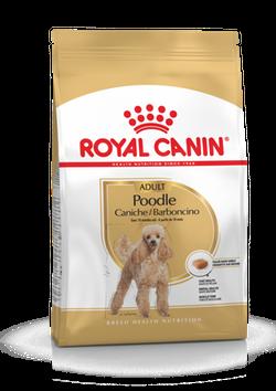 ROYAL CANIN POODLE 1,5 KG
